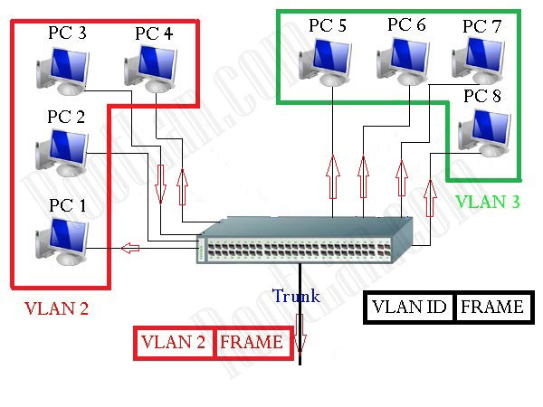 Access-and-Trunk-Interfaces