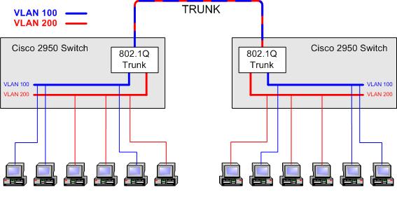 Trunk Port
